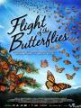 Cuộc Di Cư Của Loài Bướm - Imax - Flight Of The Butterflies