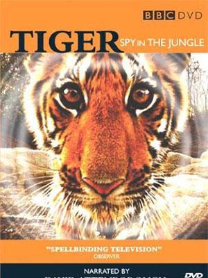 Loài Hổ: Gián Điệp Rừng Xanh Tiger: Spy In The Jungle.Diễn Viên: David Attenborough