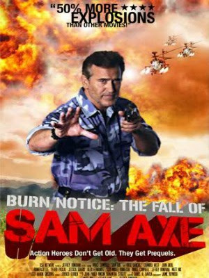 Thất Bại Của Sam Axe - Burn Notice: The Fall Of Sam Axe