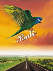 Chú Vẹt Paulie - Paulie