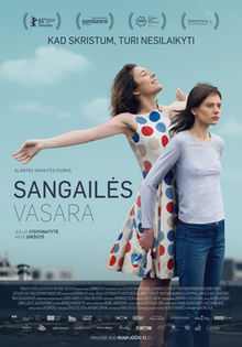 Mùa Hè Của Sangaile - The Summer Of Sangaile Việt Sub (2015)