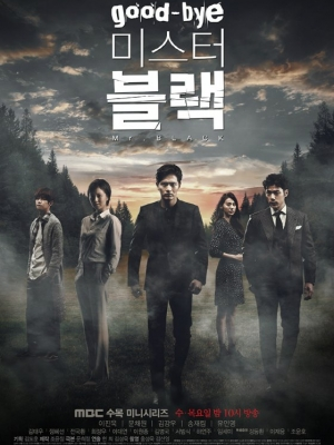 Tạm Biệt Mr Black Goodbye Mr Black.Diễn Viên: Lee Jin Wook,Moon Chae Won,Yoo In Young,Kim Kang Woo,Song Jae Rim,Lee Won Jong,Im Se Mi