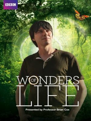 Những Điều Kì Diệu Của Sự Sống Wonders Of Life.Diễn Viên: Shari Shattuck,Eric Etebari,Jane Park Smith