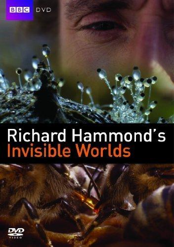 Thế Giới Vô Hình Richard Hammonds Invisible Worlds.Diễn Viên: Richard Hammond,Tracy Albrecht,Alan Bradley