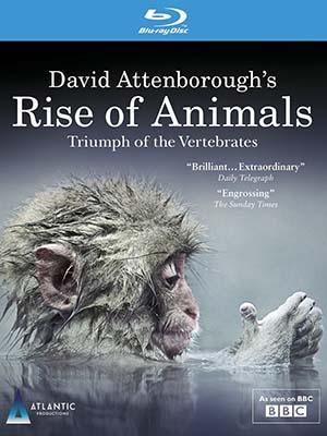 Sự Trỗi Dậy Của Động Vật - Rise Of Animals: Triumph Of The Vertebrates