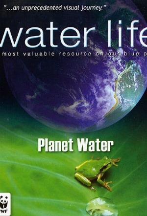 Cuộc Sống Nước Water Life.Diễn Viên: Hàn Canh,Vương Âu,Kiều Chấn Vũ,Quỷ Quỷ