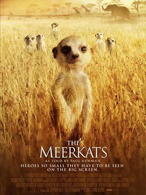 Loài Cầy Vằn Châu Phi The Meerkats.Diễn Viên: Paul Newman,Rufus Beck