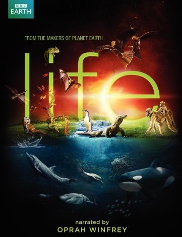 Khám Phá Cuộc Sống Động Vật Life.Diễn Viên: David Attenborough,Oprah Winfrey,Doug Allen