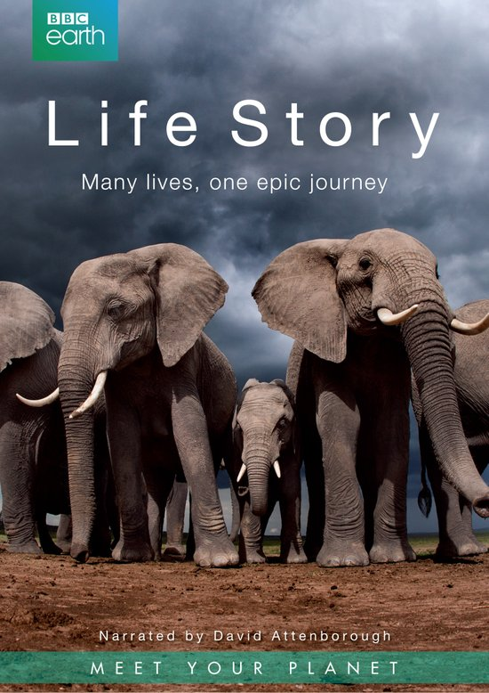 Câu Chuyện Cuộc Sống Life Story.Diễn Viên: David Attenborough,Dwen Gyimah