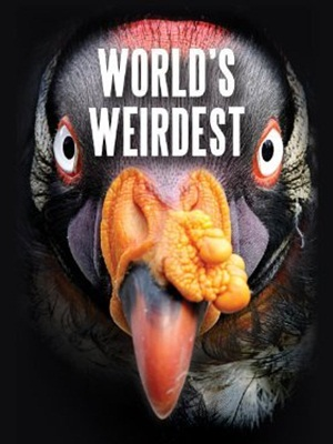 Những Sinh Vật Kì Lạ Nhất Thế Giới Worlds Weirdest.Diễn Viên: Carin Bondar,Thomas Dalby,Gabriel Koura