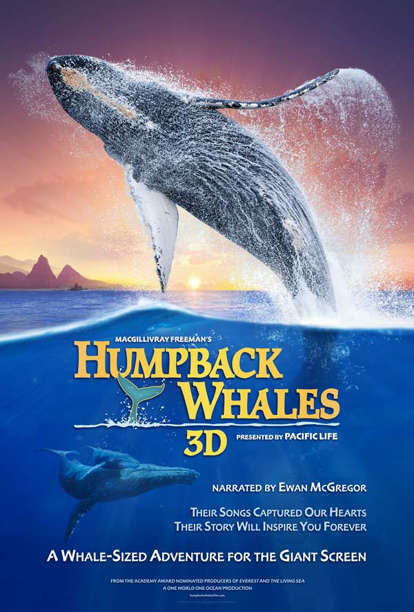 Cá Voi Lưng Gù Humpback Whales.Diễn Viên: Ewan Mcgregor