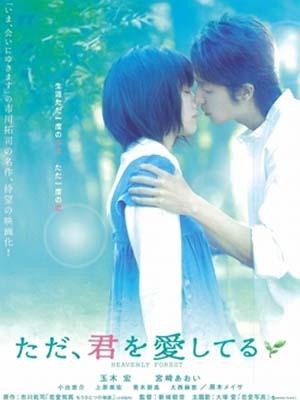 Khi Yêu Heavenly Forest.Diễn Viên: Aoi Miyazaki,Hiroshi Tamaki,Munetaka Aoki
