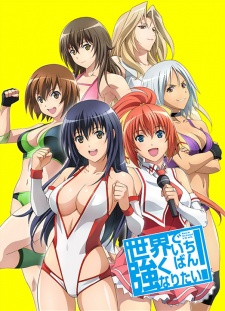 Sekai De Ichiban Tsuyoku Naritai! - Wanna Be The Strongest In The World Việt Sub (2013)