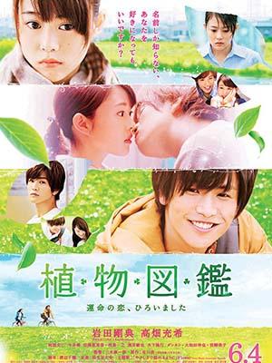 Tình Yêu Định Mệnh Chợt Đến Shokubutsu Zukan: Evergreen Love.Diễn Viên: Botanical Books