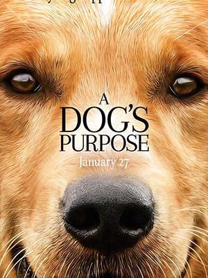 Mục Đích Sống Của Một Chú Chó A Dogs Purpose.Diễn Viên: Josh Gad,Dennis Quaid,Peggy Lipton
