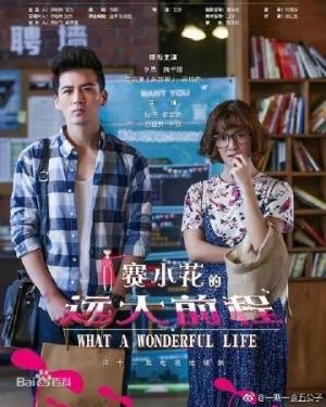 Tiền Đồ Rộng Lớn Của Tái Tiểu Hoa What A Wonderful Life.Diễn Viên: Ngụy Thiên Tường,Lý Thạnh Li Sheng