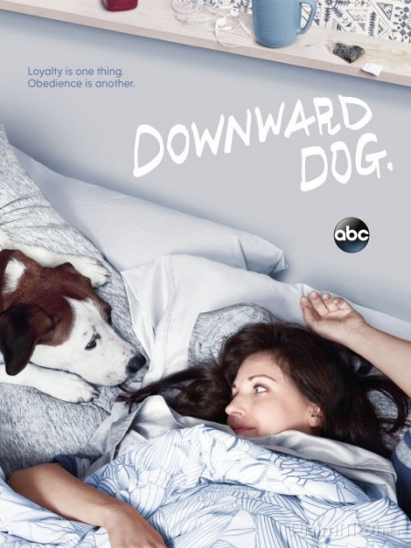 Góc Nhìn Của Chó Phần 1 Downward Dog Season 1.Diễn Viên: Hayley Atwell,Eddie Cahill,Shawn Ashmore