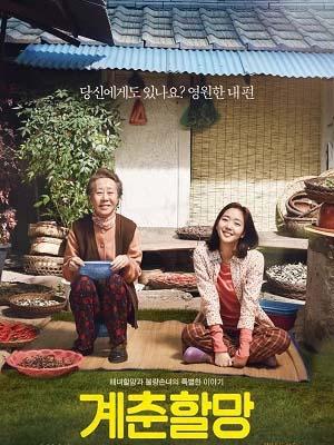 Hoa Cải Vàng Canola.Diễn Viên: Youn Yuh Jung,Kim Go Eun,Kim Hee Won,Shin Eun Jung