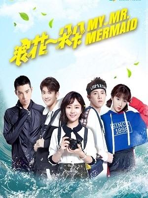 Từng Đóa Bọt Sóng - My Mr Mermaid