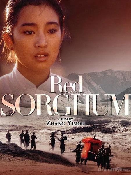 Cao Lương Đỏ Red Sorghum