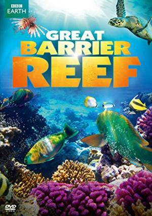 Rặng San Hô - Great Barrier Reef