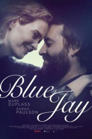 Cà Phê Blue Jay - Blue Jay