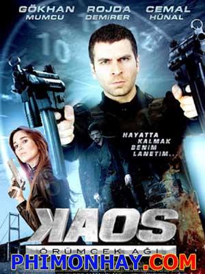 Khủng Bố Mafia - Kaos Örümcek Agi Việt Sub (2012)