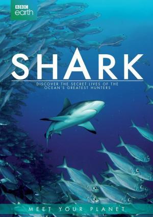 Thế Giới Bí Ẩn Của Cá Mập - Shark