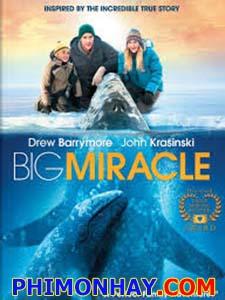 Giải Cứu Cá Heo Big Miracle.Diễn Viên: Drew Barrymore,John Krasinski And John Pingayak