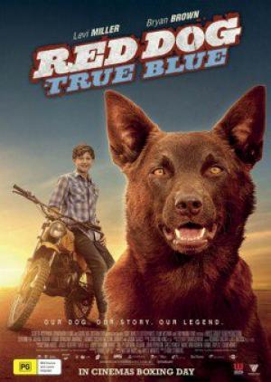Chú Chó Trung Thành 2 Red Dog: True Blue.Diễn Viên: Jason Isaacs,Levi Miller,Bryan Brown