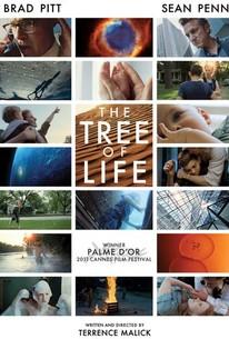 Cây Sinh Mệnh The Tree Of Life.Diễn Viên: Jessica Chastain,Sean Penn,Brad Pitt