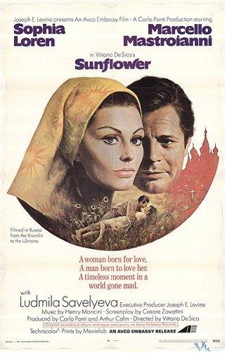 Hoa Hướng Dương - Sunflower Việt Sub (1970)