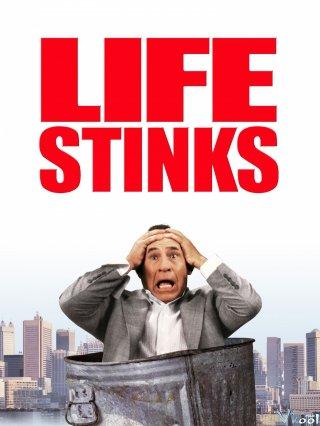 Tỷ Phú Khu Ổ Chuột Life Stinks.Diễn Viên: Jennifer Warren,Ronny Graham,Mel Brooks