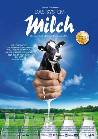 Hệ Thống Sữa Bò - The Milk System