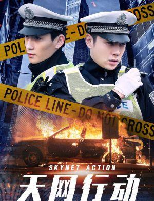 Thiên Võng Hành Động - Skynet Action Việt Sub (2019)