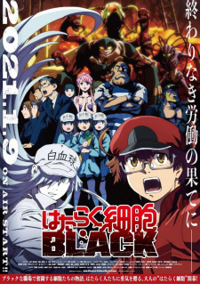 Hataraku Saibou Black (Tv) Cells At Work! Code Black