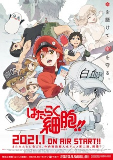 Hataraku Saibou!! Cells At Work! 2Nd Season.Diễn Viên: Joban No Machi De Kurasu Youna Monogatari