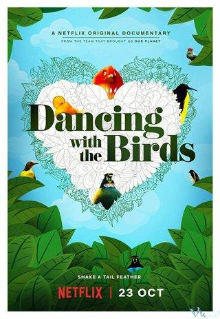 Vũ Điệu Của Loài Chim - Dancing With The Birds