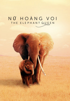 Nữ Hoàng Voi - The Elephant Queen