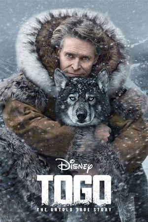 Chú Chó Togo - Togo Thuyết Minh (2020)