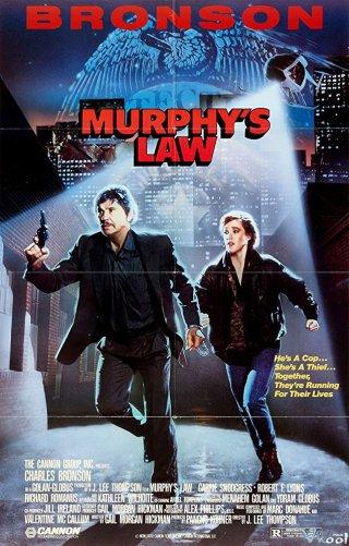 Đi Tìm Sự Thật - Murphys Law