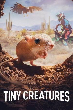 Những Sinh Vật Tí Hon Phần 1 Tiny Creatures Season 1.Diễn Viên: Make It Do,Or,Die Survival Training