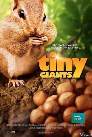 Thiên Nhiên Kì Thú Tiny Giants 3D.Diễn Viên: Conspiracy Of The Military