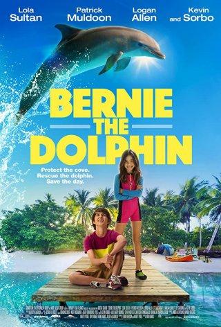 Cá Heo Bernie Bernie The Dolphin