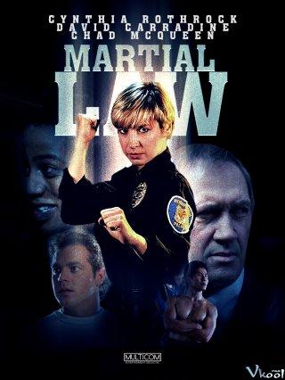 Thiết Quân Luật Martial Law