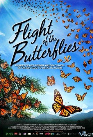 Cuộc Di Cư Của Loài Bướm Imax - Flight Of The Butterflies