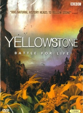 Cuộc Chiến Sinh Tồn Yellowstone: Battle For Life