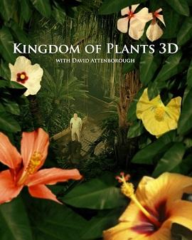Vương Quốc Thực Vật - Kingdom Of Plants