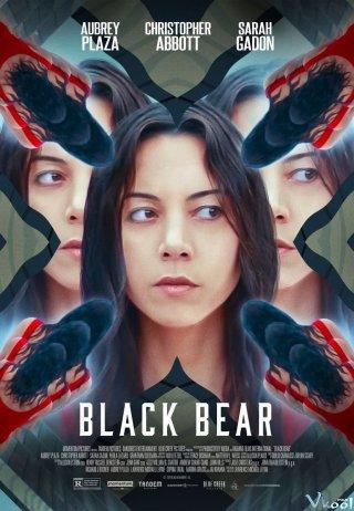 Gấu Đen Black Bear