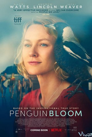 Cánh Cụt Nhà Bloom - Penguin Bloom